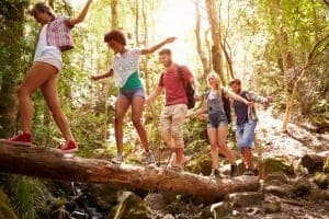 Group of friends exploring in the forest near our Great Smoky Mountain cabin rentals.