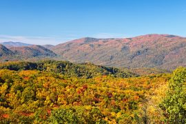 Stunning fall colors in the mountains near Pigeon Forge TN